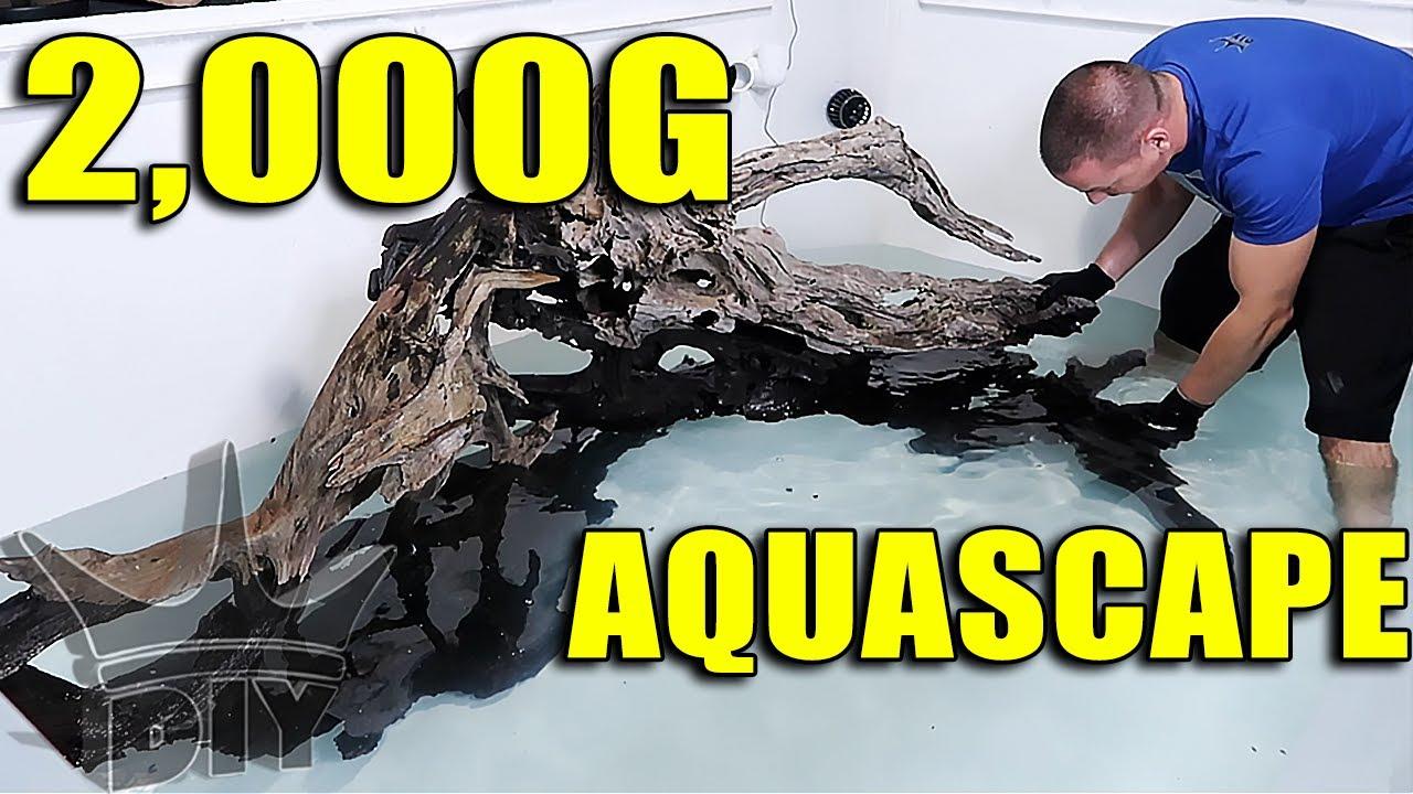 aquarium-aquascape-2-000-gallon-fish-tank-scape