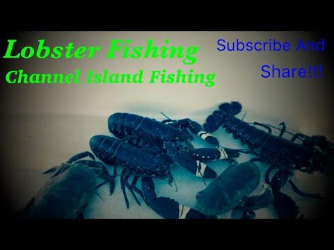 Lobster Fishing In Channel Islands
