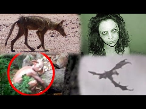 Proving These Creatures REAL/FAKE! (Dragon, Goblin, Demon & Chupacabra!)
