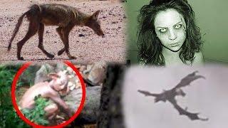 Proving These Creatures REAL/FAKE! (Dragon, Goblin, Demon & Chupacabra!)