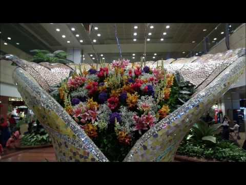 Singapore Changi Airport walk around tour