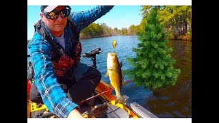 Spring Fishing In The Pine Barrens