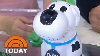 Hoda Kotb, Jenna Bush Hager And Lester Holt Try A Barking Cookie Jar | TODAY