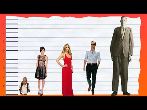 How Tall Is Jena Malone? - Height Comparison!