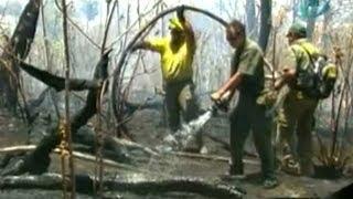Controlan incendio forestal en el Bosque La Primavera de Jalisco