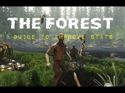 Info About Stats and How to Improve them - The Forest