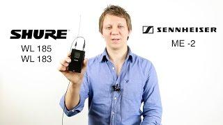 Shure WL 185 vs 183 vs Sennheiser ME 2 Lavalier Microphone Comparison
