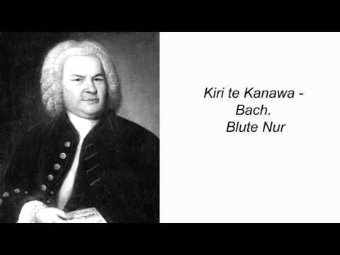 Kiri te Kanawa - Bach. Blute Nur