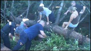 Rescue: 4 Kittens and Mother Buried under Trees after several Tornado's rip through Southern Tier NY thumbnail