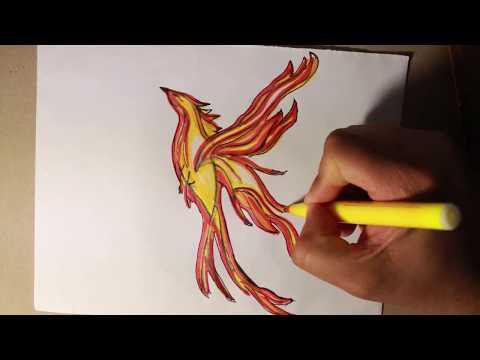 Dibujando un Ave Fenix con trazos muy sencillos / Drawing a Fenix Bird very easy.