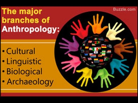 Branches of Anthropology