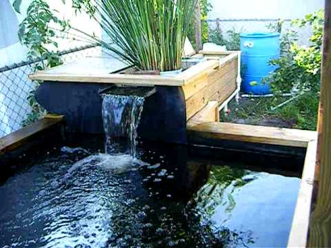 My koi pond w water falls 3000 gallon youtube for Diy pond waterfall filter