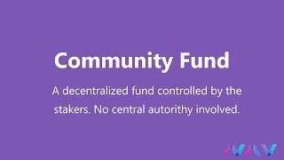 Vote for the NAV Coin Community Fund (Explanation & How to)