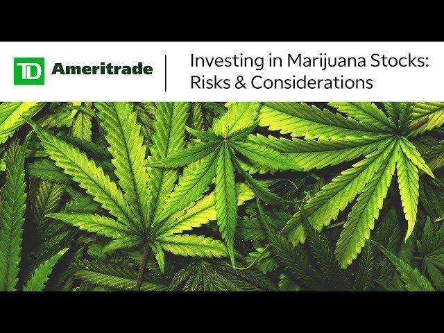 TD Ameritrade warning investors away from 'Wild West
