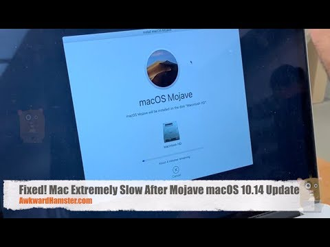 My Experience with Mac Extremely Slow After Mojave macOS 10 14 Update