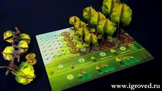Фотосинтез (Photosynthesis). Обзор настольной игры от Игроведа.