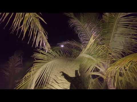 der-sonnenuntergang-und-die-schönen-abendstunden-auf-den-malediven-!