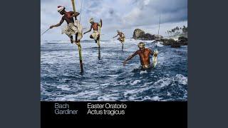 """Gottes Zeit ist die allerbeste Zeit, BWV 106, """"Actus tragicus"""": Sonatina"""