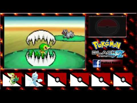 Nuzlock Pokémon Black Blaze Random - Episodio 3