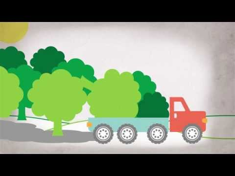 How does a Biomass Fuel Plant Work? - Catskill Forest Association, NY