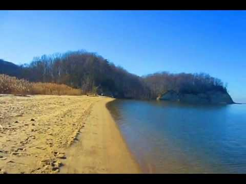 Fossil Beach, Westmoreland County Park Virginia