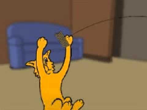 Cat Dancer Commercial