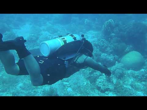Scuba Diving in Bohol #Babalikasaganda