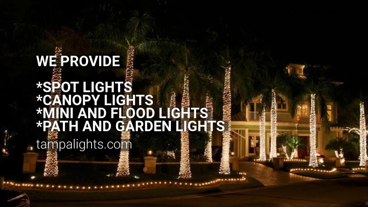 Best Landscape Lighting Installation Company Tampa Lights