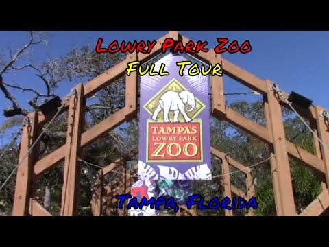 Lowry Park Zoo Full Tour - Tampa Bay, Florida