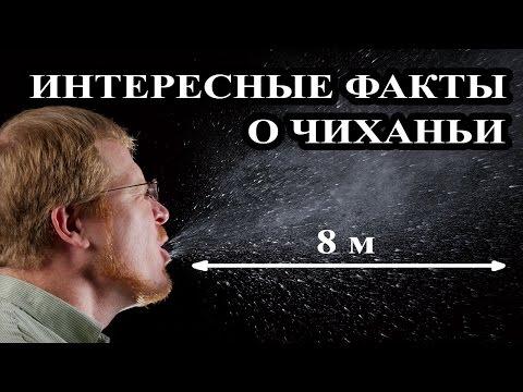 Топ 10 Интересные факты о чиханьи. Причины чиханья