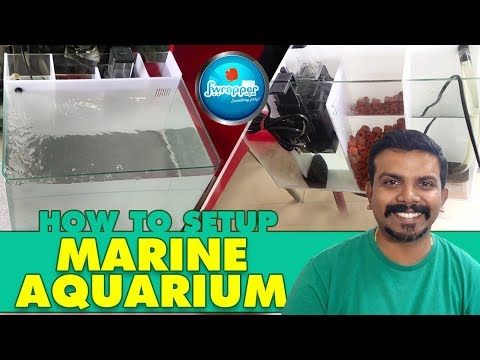 How To : Setup Marine Aquarium || Salt Water Fish Tank