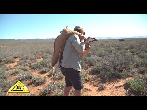Springbok Hunting [Catch Clean Cook] South Africa