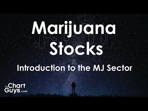 How to Trade Marijuana Stocks: Introduction to the Investing in the Marijuana Sector