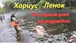 Рыбалка на горной реке Хариус Ленок часть 1
