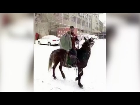 Footage: Inner Mongolia delivery man rides through snow to distribute on time