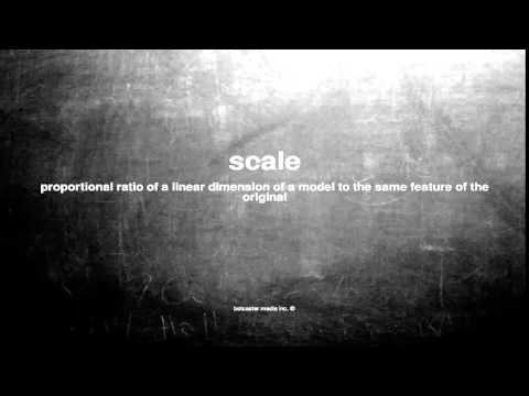 What does scale mean