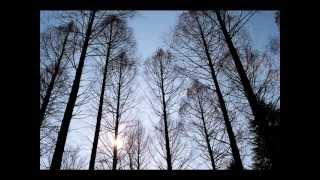 "HYMNS ""Praise My Soul The King of Heaven"" - JOHN ALLDIS - The London Philharmonic Choir"