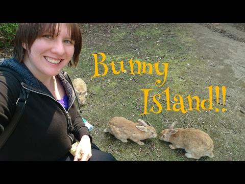 Bunny Island!