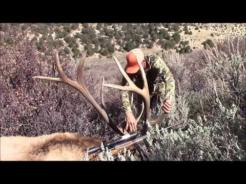 2017 Utah General Any Bull Elk Hunt