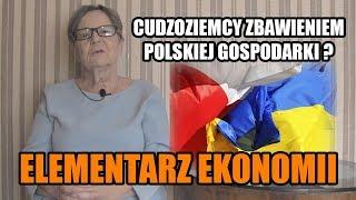 ELEMENTARZ EKONOMII - odc.86 Cudzoziemcy zbawieniem polskiej gospodarki?