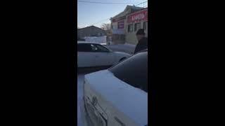Подстрелили собаку средь бела дня