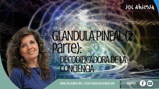 La Glándula PINEAL (Parte 2): DECODIFICADORA de la LUZ de l...