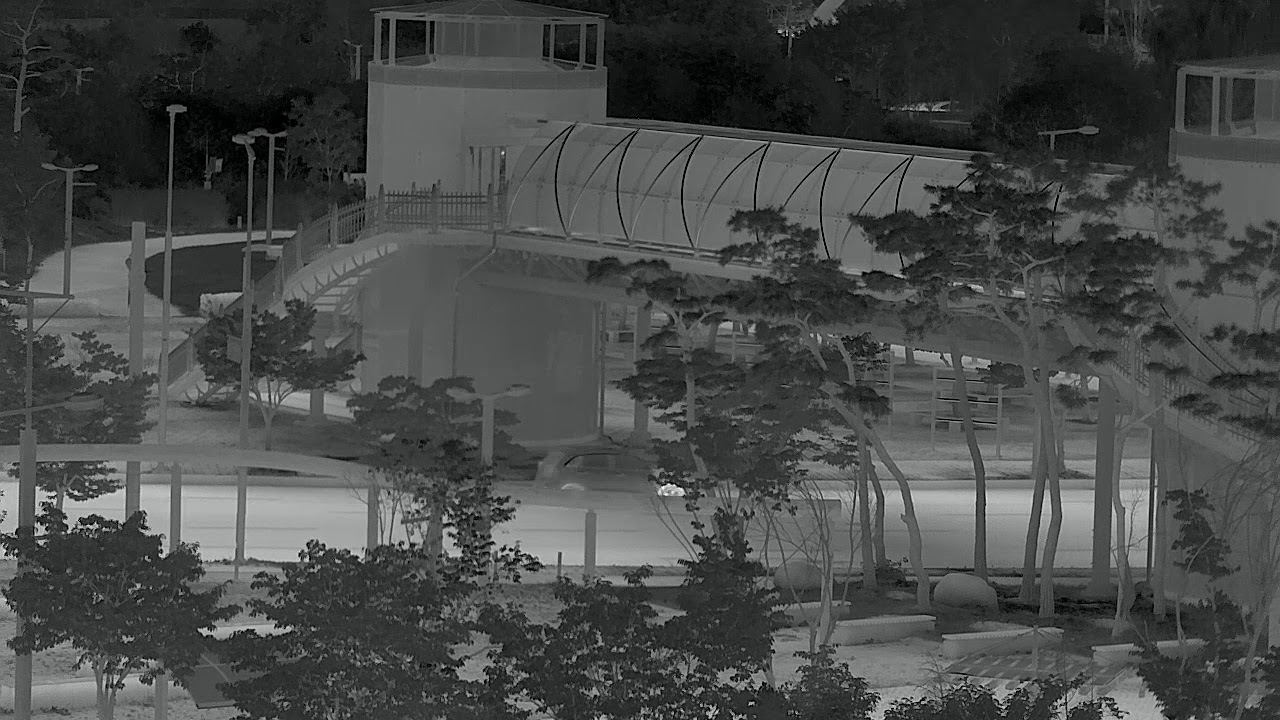 1280x1024 10um InSb MWIR infrared Video [Park]