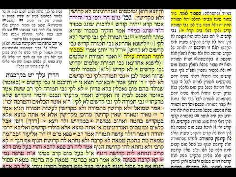 הדף היומי מסכת תמורה דף יז Daf yomi Temurah daf 17