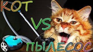 Кот против пылесоса (Cat VS Vacuum cleaner)