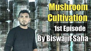Mushroom Cultivation 1st Episode by Biswajit Saha || Saha Mushroom 🍄