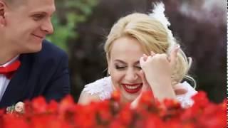 Валерия и Дмитрий бумажная свадьба.