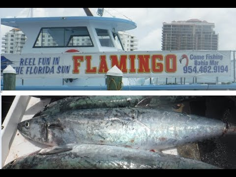 The Flamingo Fishing Boat!!! Fort Lauderdale!! Kingfish Mackerel!! Amazing
