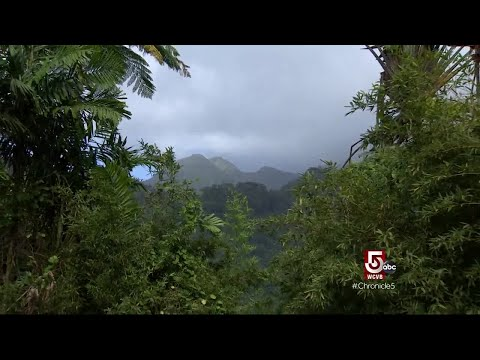 Martinique: Natural Beauty & Deep History