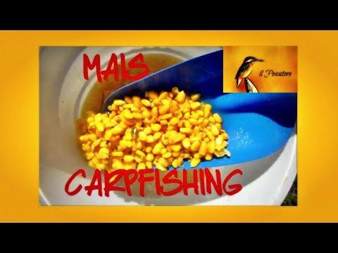 PREPARARE IL MAIS - Carpfishing Tutorial 2 - Edoardo M. Martini